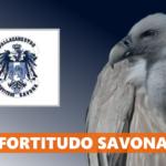 PROMO – La Fortitudo Savona è campione regionale