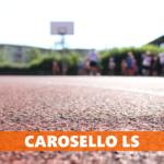 Carosello LS #3 del 2017: Bigoni, Saccaggi, Monaco, Peychinov, Mangione, Grosso e Baiardo