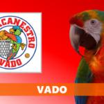 MERCATO – Guida tecnica rinnovata a Vado: arriva Imarisio, così come Cirillo dalla DB
